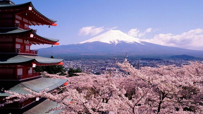 Fuji Mountain - Fuji Mountain