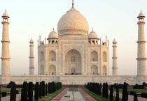 Taj Mahal Sturdy - Taj Mahal Sturdy