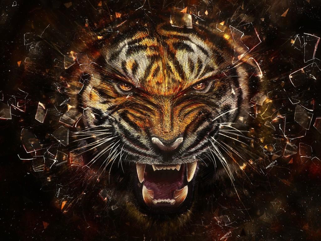 Tigers Desktop - Tigers Desktop