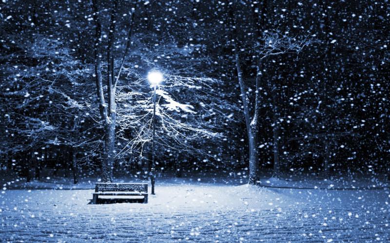 Winter Image - Winter Image