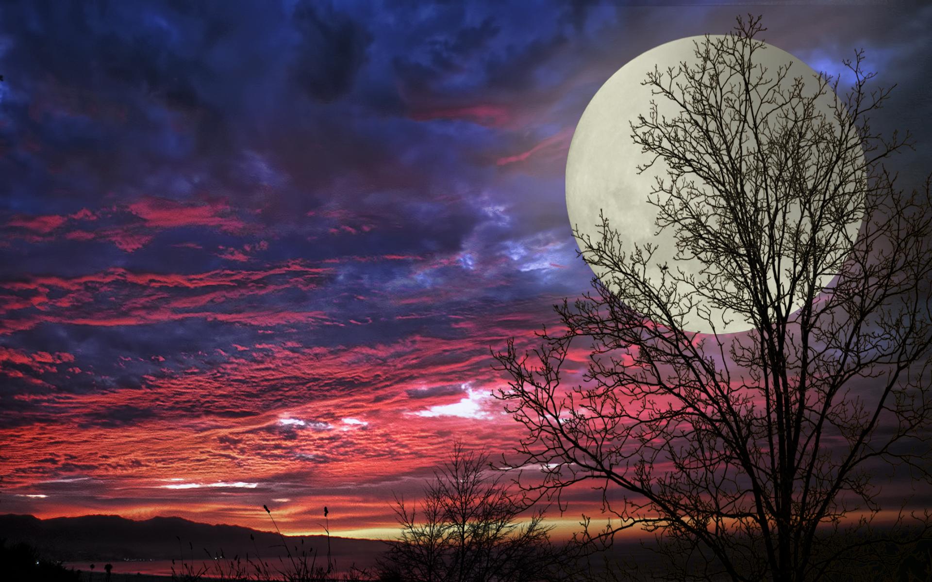 Beautiful Of Super Moon - Beautiful Of Super Moon