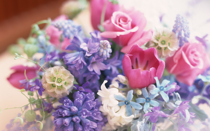 Flowers Pastel Colours - Flowers Pastel Colours