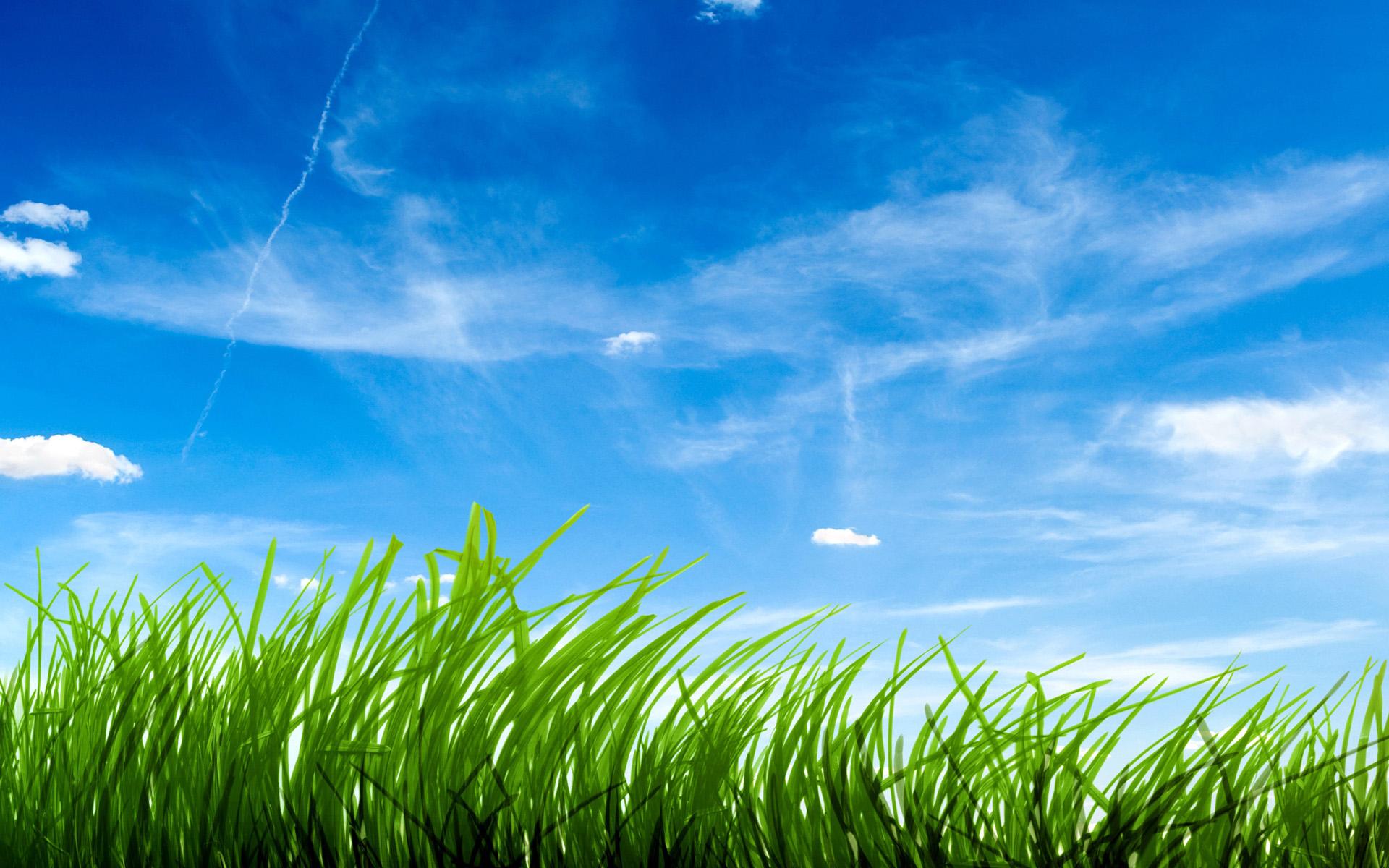Green Grass Upper The Sky - Green Grass Upper The Sky