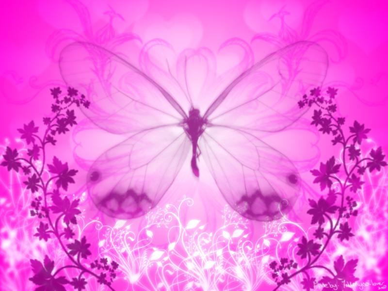 Pink Butterfly Background - Pink Butterfly Background