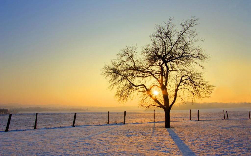 Sunrise On The Snows - Sunrise On The Snows