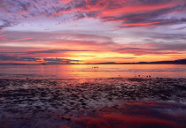 Beautiful Magenta Sunrise - Beautiful Magenta Sunrise