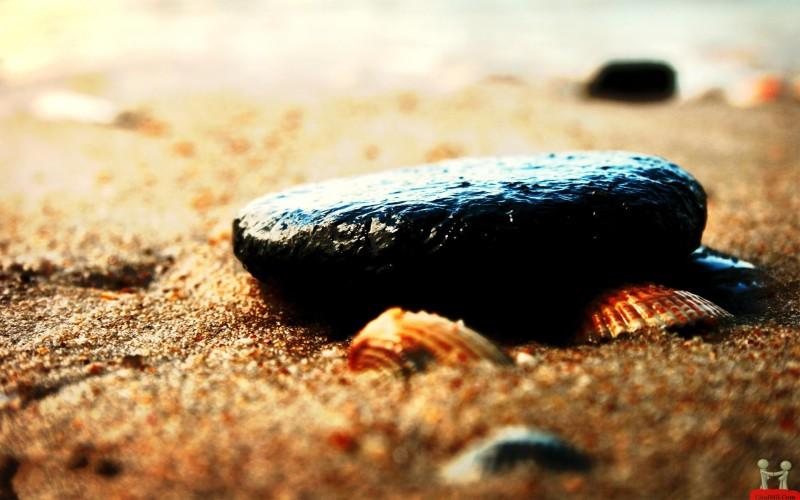 Black Stones In The Beach - Black Stones In The Beach
