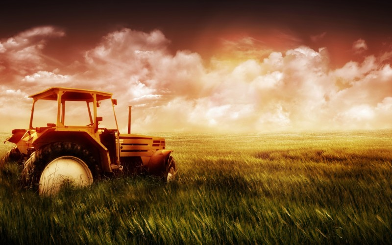 Fresh Sunrise Landscape - Fresh Sunrise Landscape
