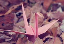 Birds Origami Widescreen - Birds Origami Widescreen