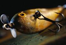 Fishing Sill Equipments - Fishing Sill Equipments