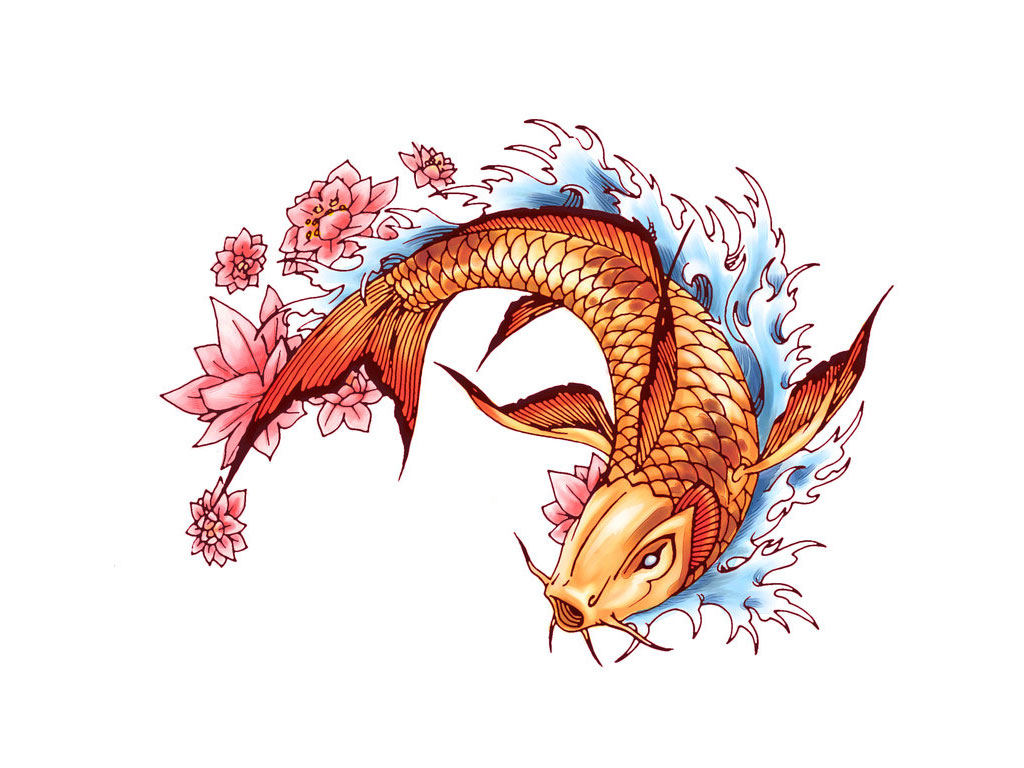 Japanese Koi Fish Free Design Creative