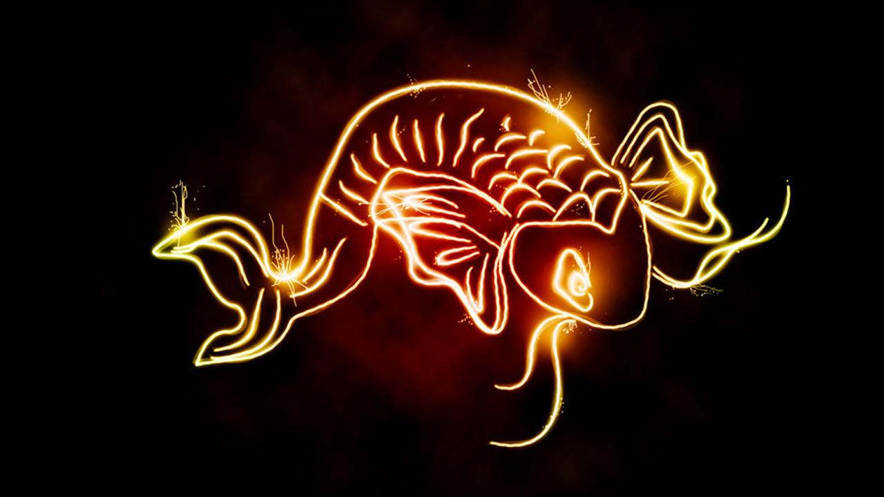 Koi Fish Light Shine Art - Koi Fish Light Shine Art