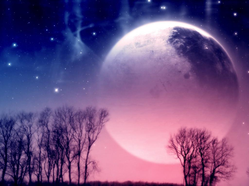 Pink Moonlight - Pink Moonlight