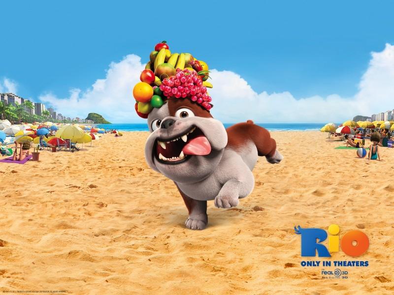 Bulldog Luiz Rio 3D Movie - Bulldog Luiz Rio 3D Movie