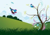 Peacefull Bird Heaven - Peacefull Bird Heaven