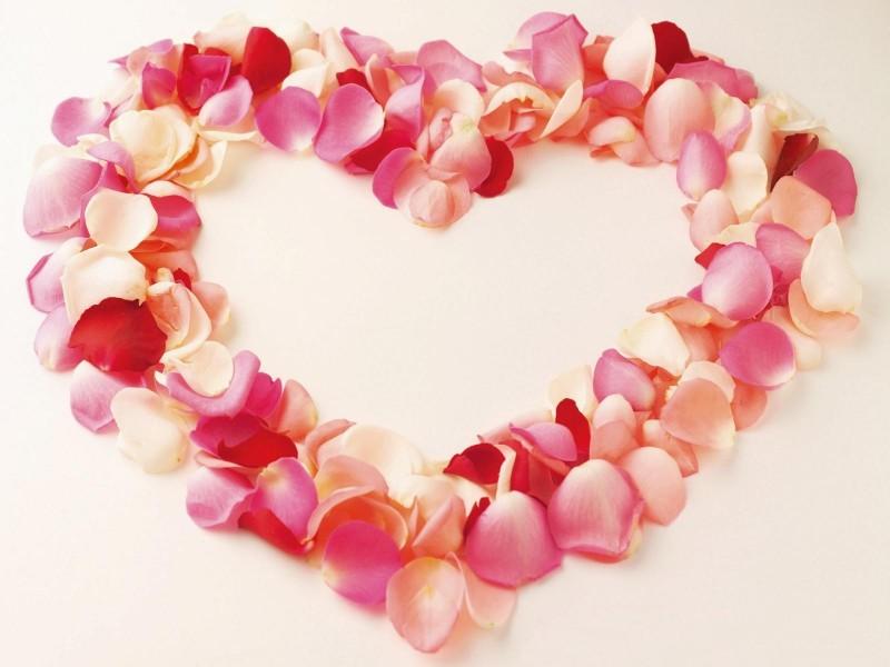 Piles Of Love - Piles Of Love