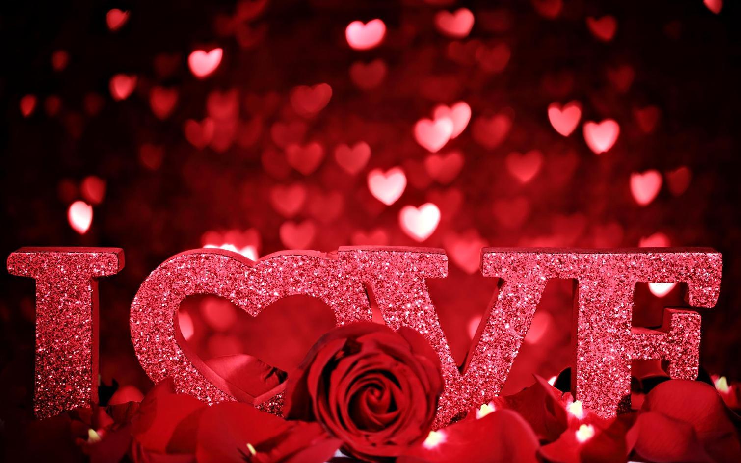 Red Rose Loves - Red Rose Loves