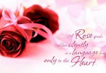 Red Roses Speaks Up Love - Red Roses Speaks Up Love