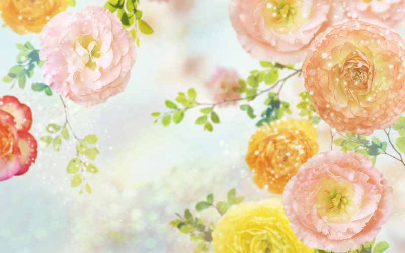 Sparkling Carnation Art - Sparkling Carnation Art