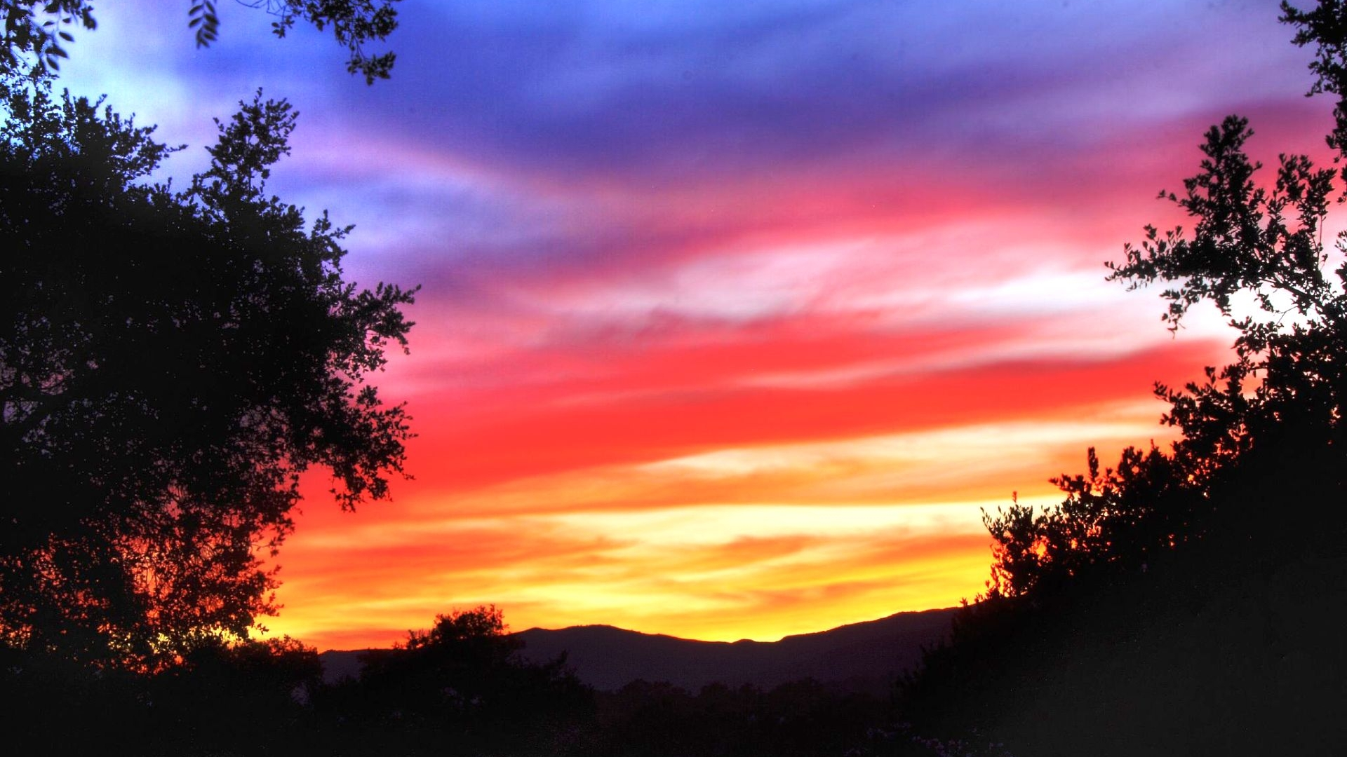purple  red  and yellow sunset