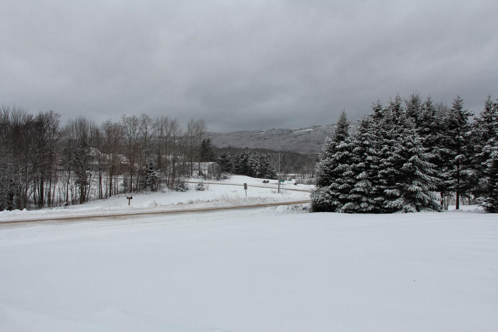 nice winter scene snow