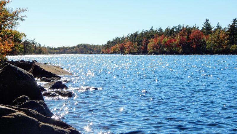 Beautiful Fall Day On Lake
